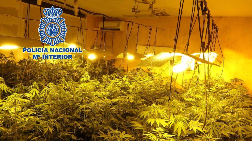 Policía Nacional Marihuana Vilanova del Camí
